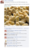 Hetalia Facebook: Baby Gilbirds by gilxoz-epicness