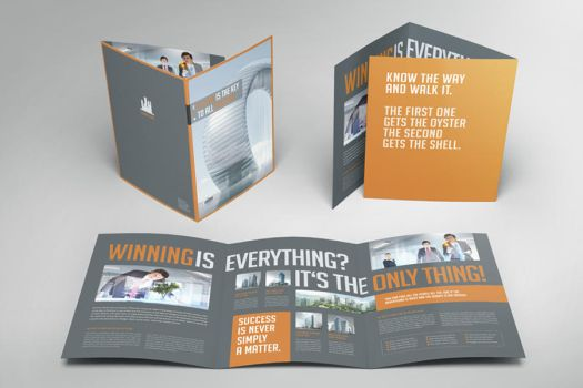 Business Image Trifold by Mikingers