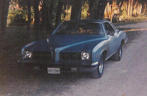 1974 Pontiac Luxury LeMans by Walking-Tall