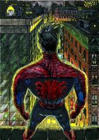 Peter Parker ATC Colors by DKuang