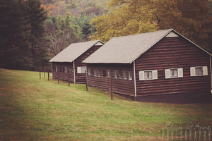 Cabins by Grace-like-rainx