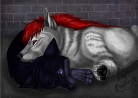 Solace by Roukara
