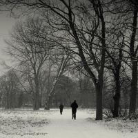 Snow walks by lostknightkg