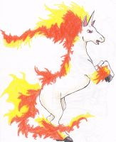 Rapidash by 1Keepsake