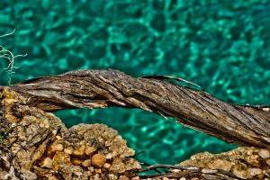 Curved and cracked by forgottenson1