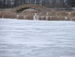 Bridge Over a Frozen Pond by FantasyStock