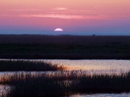 Danube Delta sunset by Luiza82