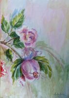 roses 3 by danuta50