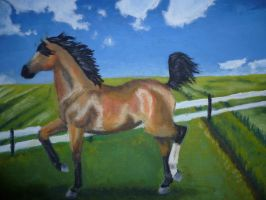 Trotting horse by rusellew
