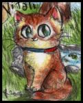 Chibi Two Red Cats characters - Vitali by FuriarossaAndMimma
