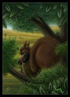 WatchSquirrel by axcelia