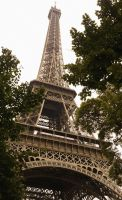 Eiffel Tower among the Trees by NajaranaKryska