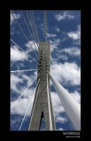 Skybridge by bigshotdan