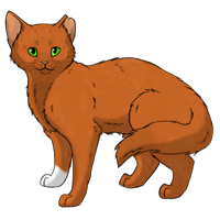 Squirrelflight by Animalible