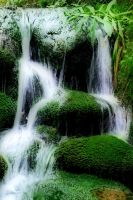 Wildwater by tomsumartin