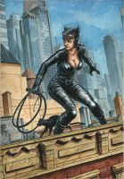 Catwoman On A Roof by Nicolas-Demare
