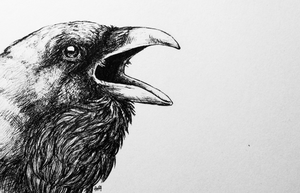 inktober03 - a crow by iva-draws