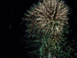Green and White Fireworks by TheWizardofOzzy