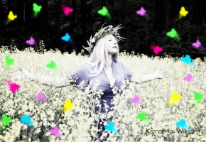 THE MAGIC OF BUTTERFLIES by KerensaW