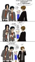 Harry Potter---That's PUNNY by QuietLittleBlackbird