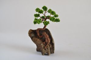 Wire Bonsai Tree by NoriAnum