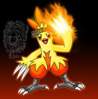Blaze, my Combusken by TheDocRoach