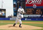 Mr. Met by SportsLunatic