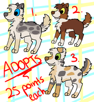 dog adopts :25 points: by LouPup