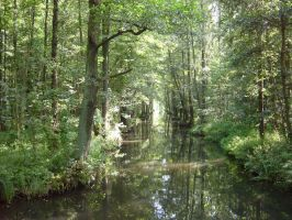 Spreewald, Germany by TanteTabata