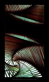 My Twisted Symphony by couleur