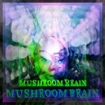 Alternative Version for MushroomBrain youtube Vid by MushroomBrain