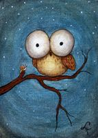 Little Owl and Snail by linmh