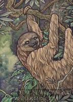 Sloth ACEO by thedancingemu