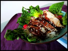 Asian Chicken Salad and Crazy sauce by Drac0ntias