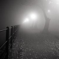 Fog Alley by vvolfmann