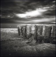 Bombay Beach Posts by perry