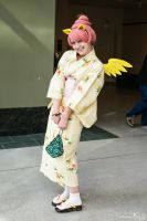 Sakura-con 2014 Fluttershy by Angel-Platypus-Photo