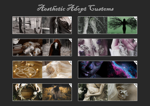 Aesthetic Adopt CUSTOMS (SET PRICE: OPEN) by SpookyCuteAdopts