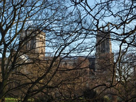 Minster through the Trees by LucysLilWorld