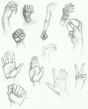 [Quest] - Complicated Tools - Hand studies by Felidacity