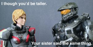 Play Arts Kai - Shepard and Master Chief by 0PT1C5