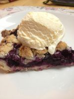 Blueberry Crumb Bar Pie-Cake by dragoon811