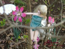 Spring Fairy10 by vmpgrl