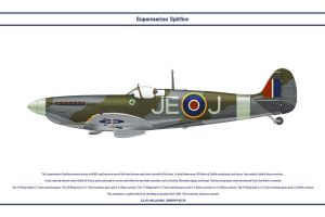 Spitfire Mk IX GB 144 Wing by WS-Clave
