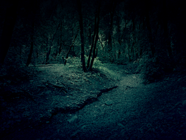 dark forest premade background by yellowicous-stock