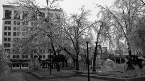 Ice Storm 2007 Part 1 by 20after4