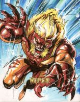 Sabretooth Card by Cinar