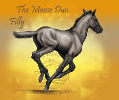 Prize: The Mouse Dun Filly by WSTopDeck