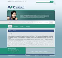 a Pharmaceutical web site v2 by xeitoon