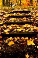 Stairs into autumn by fire-breaker